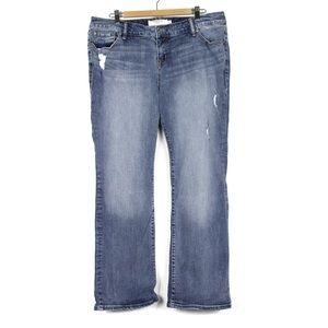 Torrid 18R Distressed Jeans Women's